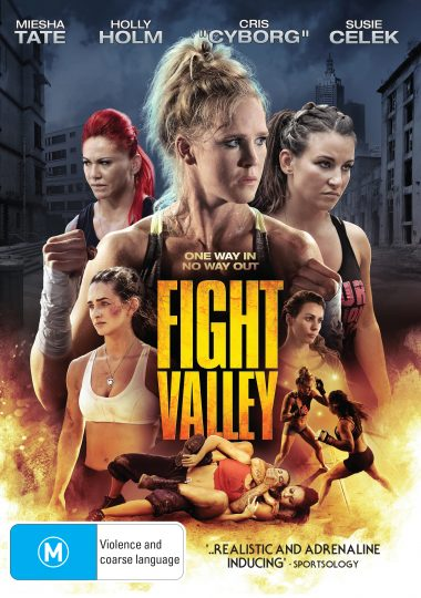 Fight Valley - High Res Art